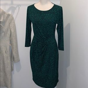 XS Ann Taylor wrap dress green leopard animal
